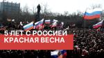 Коммунисты и комсомольцы в Русской весне