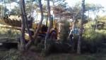 В парке Учкуевка начали несанкционированную вырубку деревьев