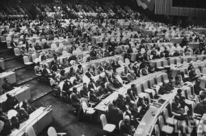 Генеральной сессии Комитета в палату Совета по опеке