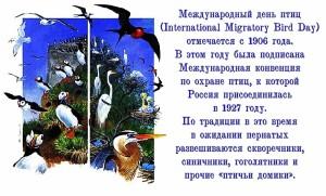 mezhdunarodnyj_den_ptic