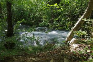 Государственный природный ландшафтный заказник регионального значения «Байдарский»