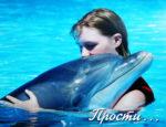 Дельфинарий в центре Севастополя демонтируют по решению суда