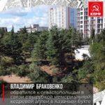 Владимир Браковенко обратился к севастопольцам в связи с вырубкой мемориальной кедровой аллеи в Казачьей бухте