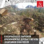 В Казачьей бухте вырубили краснокнижные деревья<br>у могилы защитников Севастополя