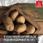 В Севастополе картофель за неделю подорожал на 14%